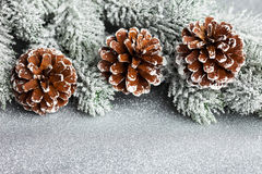 Christmas tree with pinecone Stock Image