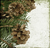 Christmas tree and pinecones Stock Photography