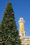 Christmas tree on the place royalty free stock photos