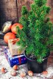 Christmas tree in pot royalty free stock photos