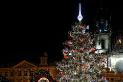 Christmas tree in prague old town square Stock Photography