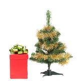Christmas tree with present box. Royalty Free Stock Photos