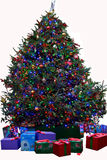 Christmas Tree with Presents -Isolated. A Christmas tree with Presents Royalty Free Stock Image