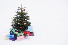 Christmas tree with presents in snow Royalty Free Stock Image