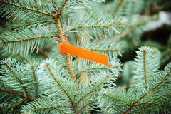 Christmas tree price Stock Photo
