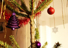 Christmas tree with purple and red decorations. Photo of christmas tree with purple and red decorations royalty free stock photography