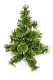 The Christmas tree ready to decorate  Stock Photography
