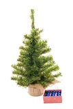 Christmas tree ready to decorate. On the white royalty free stock images