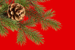 Christmas tree on red Royalty Free Stock Image