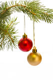 Christmas tree and  red balls Stock Images