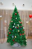 Christmas tree with red decorations, gift box in white background, Christmas concept interior room . Joyful studio shot royalty free stock photos