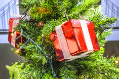 Christmas tree with red  gift box Royalty Free Stock Images