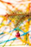 Christmas tree and red glass ball Stock Image