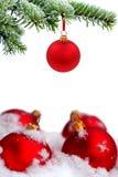 Christmas tree and red glass balls Stock Image