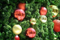 Christmas Tree with Red and Gold Decorative Balls Background. Christmas Tree with Red and Gold Decorative Balls Stock Photo