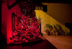 Christmas tree with red lights at Tuscan farm. Tuscan Farmhouse with tree decorated with lights and red stars Royalty Free Stock Images