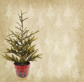 Christmas tree in a red pot on Old antique vintage paper Stock Photo