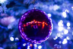 Big blue christmas tree in the park in the night Royalty Free Stock Photos