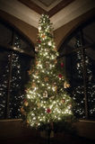 Christmas tree reflection. Christmas tree with white lights reflected in windows on either side Royalty Free Stock Image