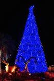 Christmas tree with reindeer and gift Stock Image