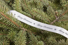 Christmas tree with ribbon Royalty Free Stock Images