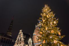 Christmas Tree at Riga, Latvia. St.Peter Church and House of the Blackheads Riga, Latvia during the Christmas period with the big Christmas Tree lighted stock image