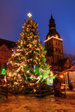 Christmas tree in Riga at night Stock Image