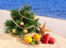 Christmas tree with ripe fruit and starfish on the sand. On the beach against blue ocean royalty free stock images