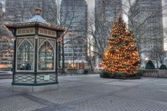 Christmas Tree in Rittenhouse Square in Philadelphia. Twinkling Christmas lights on the Rittenhouse Square Christmas tree in Philadelphia, Pennsylvania Stock Image