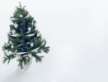 Christmas tree in the room 3d Royalty Free Stock Photography