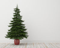 Christmas tree in room with vintage wooden floor and white wall, background. Holiday concept Stock Image