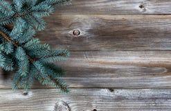 Christmas Tree on rustic wood royalty free stock photos