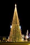 Christmas tree's here.jpg Royalty Free Stock Photos
