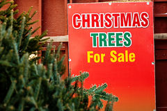 Christmas Tree Sale Royalty Free Stock Images