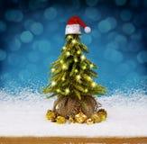 Christmas tree with Santa hat. Royalty Free Stock Photos