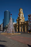 Christmas Tree in Santiago Stock Image