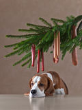 Christmas tree with sausages and lonely dog Royalty Free Stock Photography
