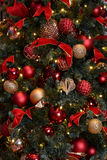 Christmas Tree Scene Stock Photos