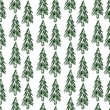 Christmas tree. Seamless pattern. Spruce forest. Christmas design. Hand drawn. Vector illustration Stock Images