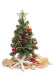 Christmas tree and seashells Stock Photo