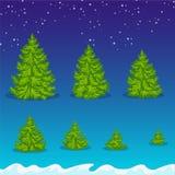 Christmas tree set. Christmas trees of various sizes Stock Photography