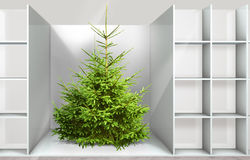 Christmas tree on the shelf. In a department store Stock Photography