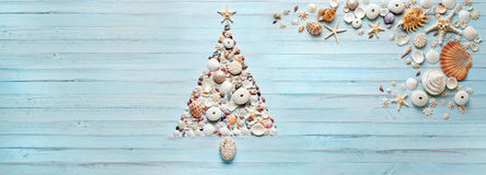 Christmas Tree Shells Tropical Banner Background