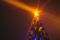 Christmas tree with shining star and dense mist Royalty Free Stock Image