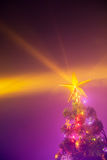 Christmas tree with shining star Stock Photo