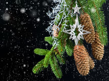 Christmas tree with shiny silver decoration Stock Images