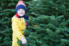 Christmas tree shopping Stock Images
