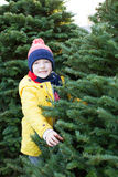 Christmas tree shopping Stock Photo