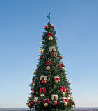 Christmas tree on sky background Royalty Free Stock Images