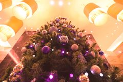 Christmas tree and small and decoration with many gift box in fancy light royalty free stock images
